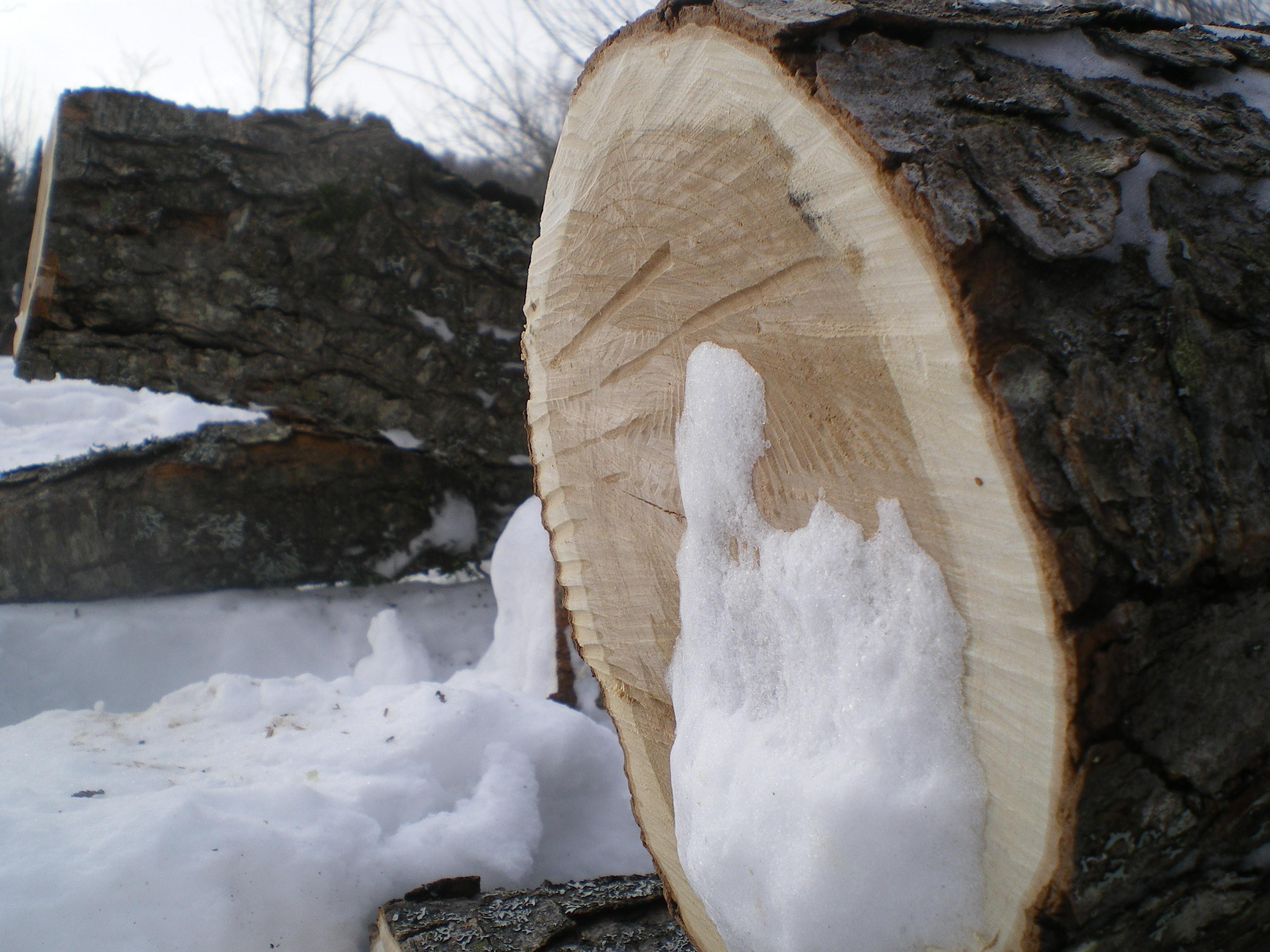 Cherry logs